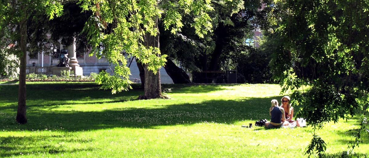 universitetspark
