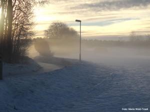 Var? på Gång- och cykelvägen mellan Eriksskolan och Berthåga, strax väster om Bärbyleden.