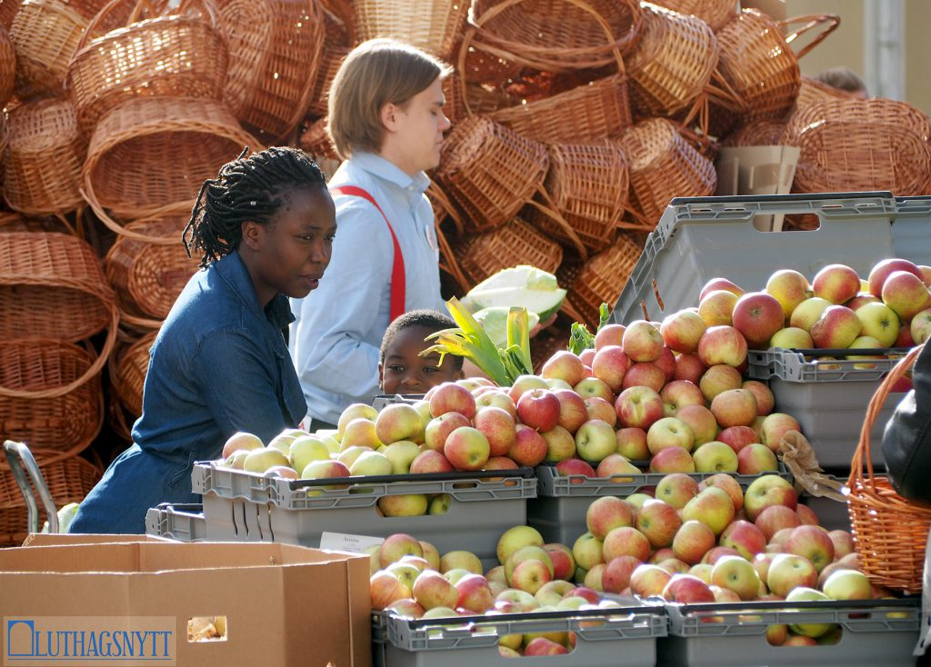 "Skordefest: På självaste ""Äpplets dag"""