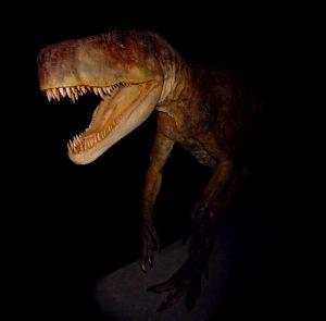 Den 210 miljoner år gamla Smok gnagde i sig ben likt en hyena