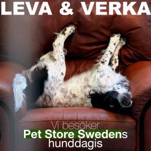 Leva & Verka: Pet Store Sweden