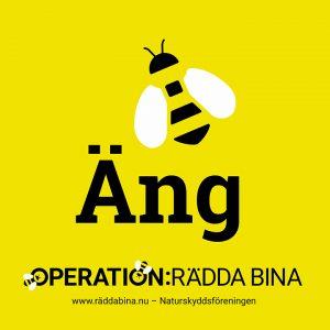 Uppdatering från Naturskyddsföreningens Operation: Rädda bina