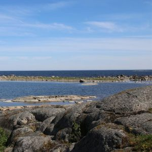 WWF | EU:s nya kvotförslag stoppar inte överfisket i Östersjön