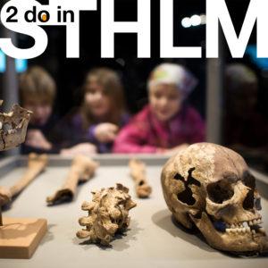 STHLM | Vårprogram på Stadsmuseet och Medeltidsmuseet 2020