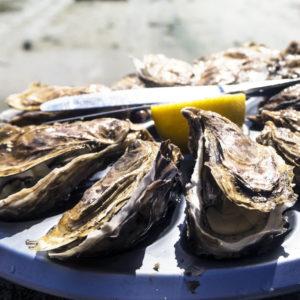 MAT & HÄLSA | Just nu många som blir sjuka av norovirus i ostron