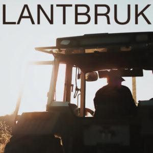 SVERIGE | Livsmedelsproduktion klassas som samhällsviktig