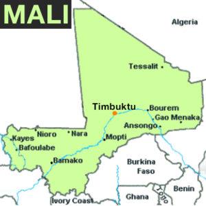 UTRIKES | Regeringen vill skicka ny svensk specialstyrka till Mali
