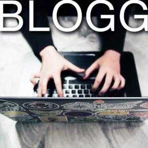 """""""Mitt i stormen"""" – Ett blogginlägg om statstjänstemännens situration i coronakrisen"""