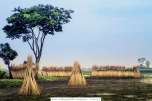 Ny rapport visar stort behov av mer bistånd till matproduktion