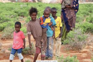 VÄRLDEN | Sverige stärker kampen mot könsstympning