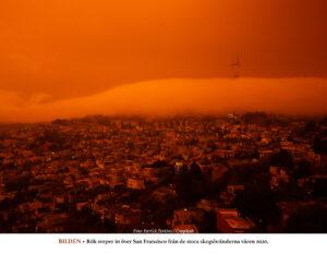 F&V | Inget samband mellan naturkatastrofer och länders åtgärder för att minska risker