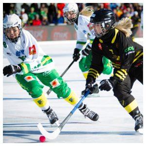 Uppsala storsatsar på Damfinalen i bandy