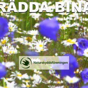 """""""Operation: Rädda bina"""" uppmanar till 10 000 räddningsinsatser"""