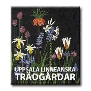 Senaste nytt från Uppsala linneanska trädgårdar