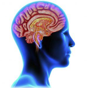 MEDICIN | Sömnbrist kan resultera i ökade nivåer av ämnen kopplade till Alzheimers sjukdom