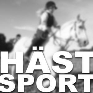Uppsalas ridsport ska utvecklas