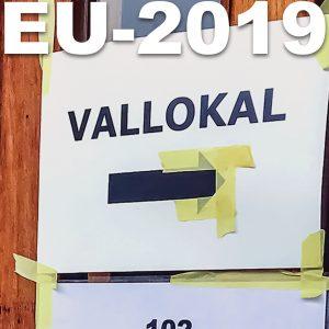 Högt deltagande i EU-valet