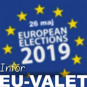Inför valet till Europaparlamentet