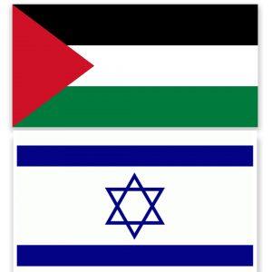 Bidragsansökan från Palestinska Folkets Förening väntas avslås