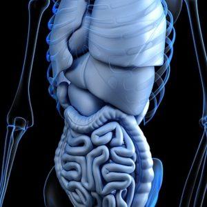 Nytt läkemedel prövas mot svåra magproblem vid diabetes
