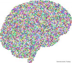 HJÄRNAN | Framsteg inom proteinforskning förbättrar diagnostik vid alzheimer