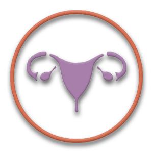 Regeringen satsar för kvinnors hälsa