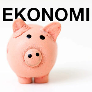 EKONOMI | Uppsalas universitet är ekonomiskt välskötta