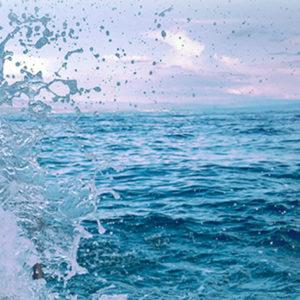 MILJÖ | Nytt samarbete ska rensa haven från 100 000 ton plast