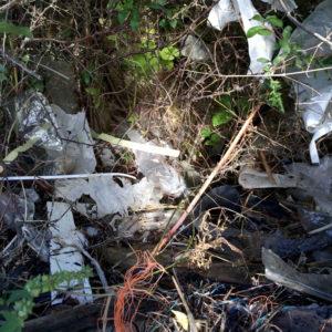 Håll Sverige Rent: Vi har problem med plastpåsar i naturen