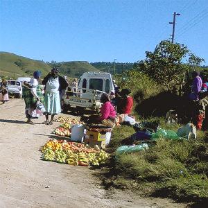SLU: Barnbidrag minskar fattigdomen i Sydafrika