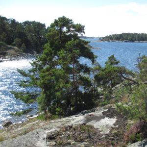 NATUR | Nu startar arbetet för att bilda en nationalpark i Nämdöskärgården i Stockholms län