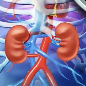 MEDICIN | Mer individanpassad vätskebalans ska minska dödligheten vid dialys