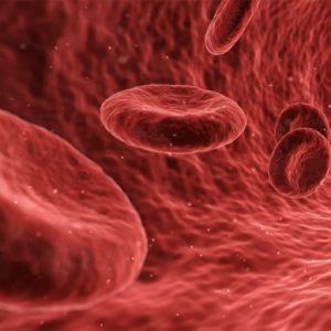 FORSKNING & VETENSKAP | Ny funktion funnen hos blodplättar i tumörers blodkärl