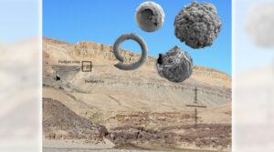 HISTORIA | Grönländska mikrofossil kan ge ny kunskap om djurens uppkomst