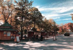 STHLM | Skansen stänger sina entréer – för första gången på 129 år