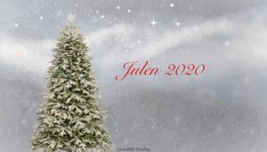 JUL 2020 | Detta är Bris digitala julvärdar