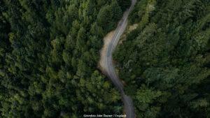 KLIMAT & MILJÖ | Rapport visar skogens potential som kolsänka
