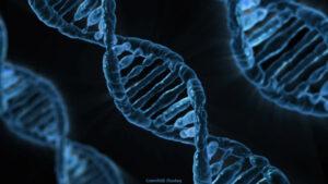 F & V | Antibiotikaresistens från slumpmässiga DNA-sekvenser