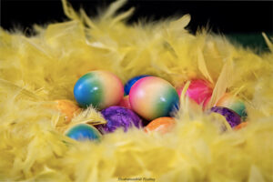 DJUR & NATUR | 9 av 10 kommuner pyntar utan fjädrar i påsk
