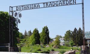 VALBORG | Botaniska trädgården och campus stängda sista april